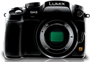 People seem to LOVE their Panasonic GH2s and GH3s.